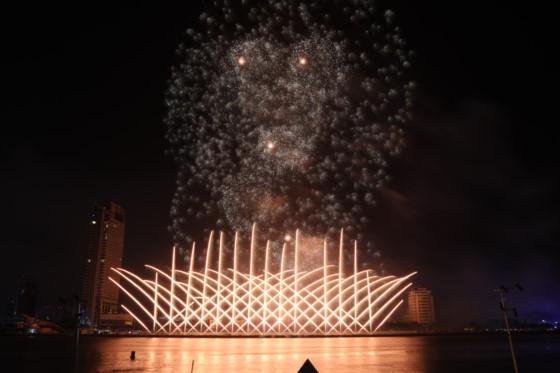 DIFF 2017 opens ảnh 5