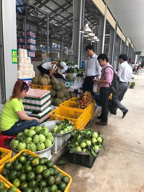 Dau Giay Wholesale Market puts into service ảnh 1