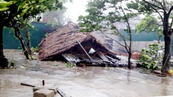 Typhoon Doksuri makes landfall in central provinces  ảnh 10