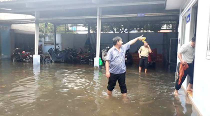 Flood tide causes flooding in Mekong Delta region  ảnh 1
