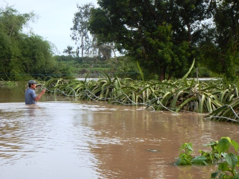 Flooding suddenly occurs in Binh Thuan  ảnh 1
