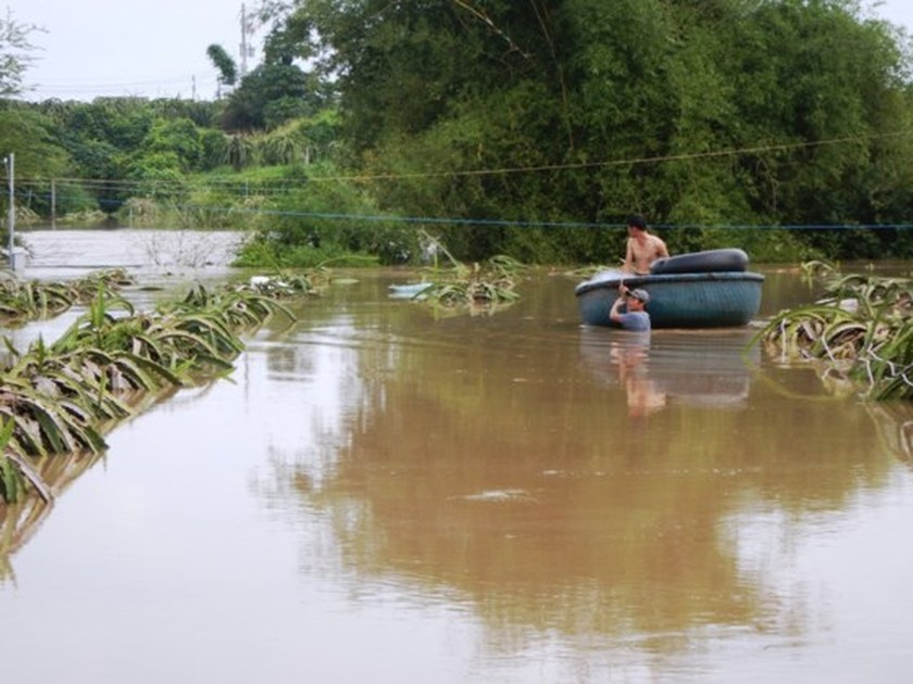 Flooding suddenly occurs in Binh Thuan  ảnh 3