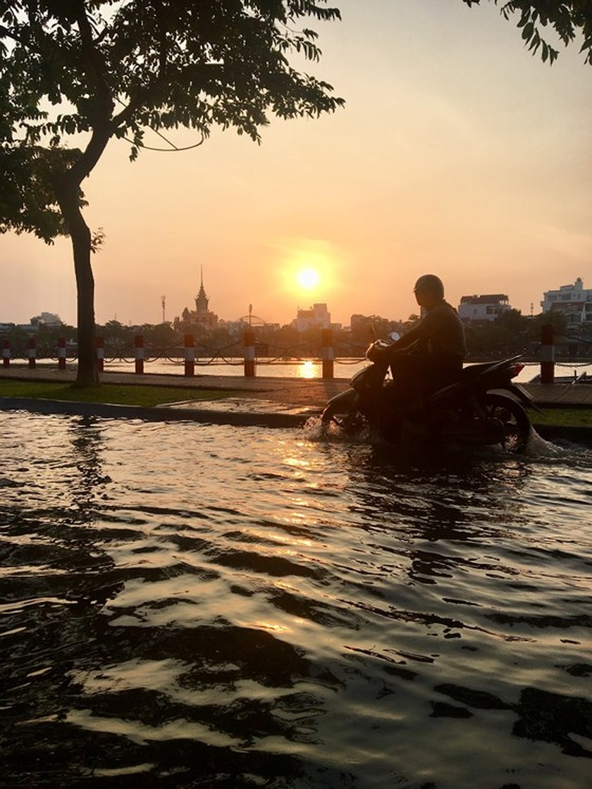 Early salt water influx hits Mekong Delta region  ảnh 1