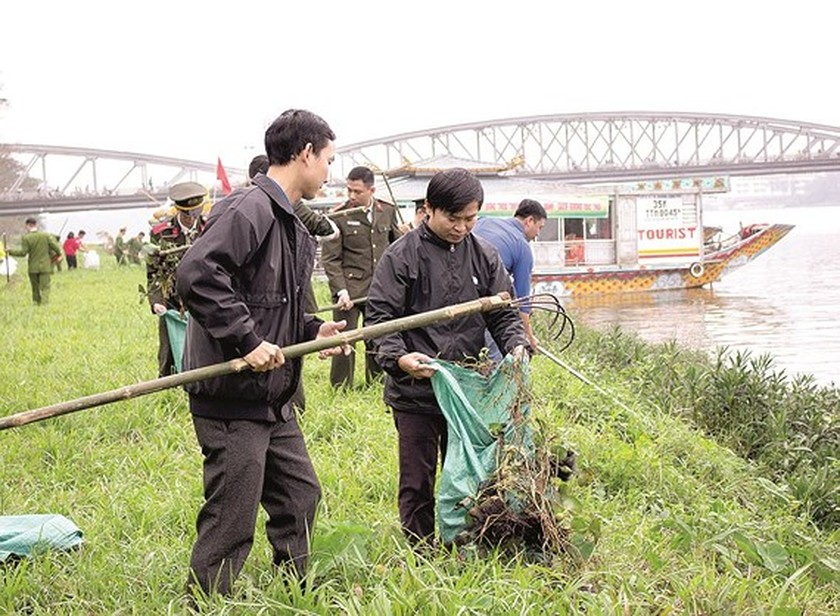 """""""Green Sunday"""" movement widely spreads environmental awareness and green lifestyle  ảnh 2"""