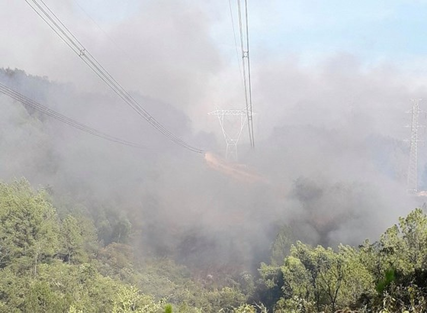 Central provinces swelter forest fire spells  ảnh 1