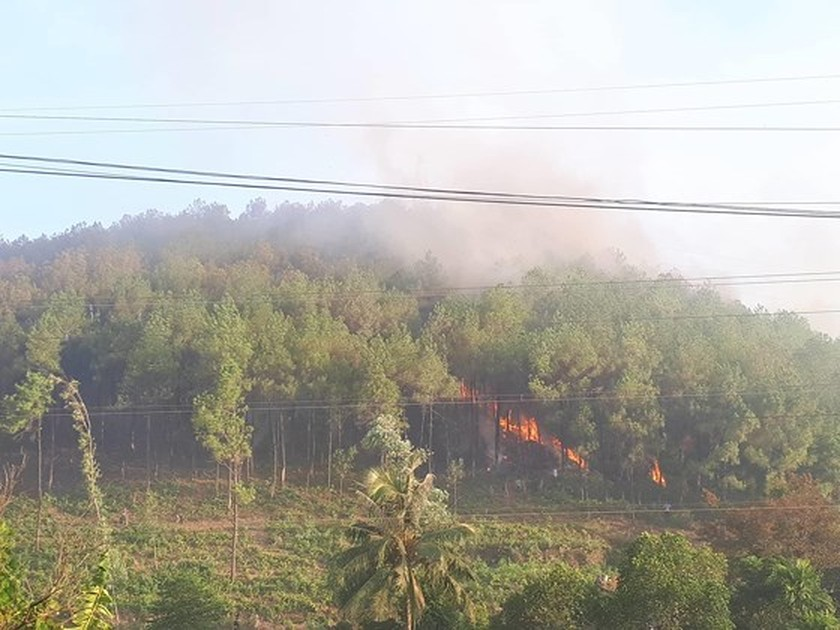 Central provinces swelter forest fire spells  ảnh 2