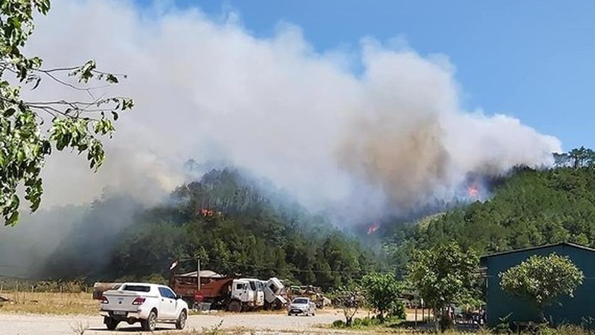 Central provinces swelter forest fire spells  ảnh 3