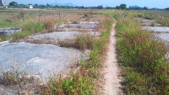 Ho Do salt field is deserted ảnh 1