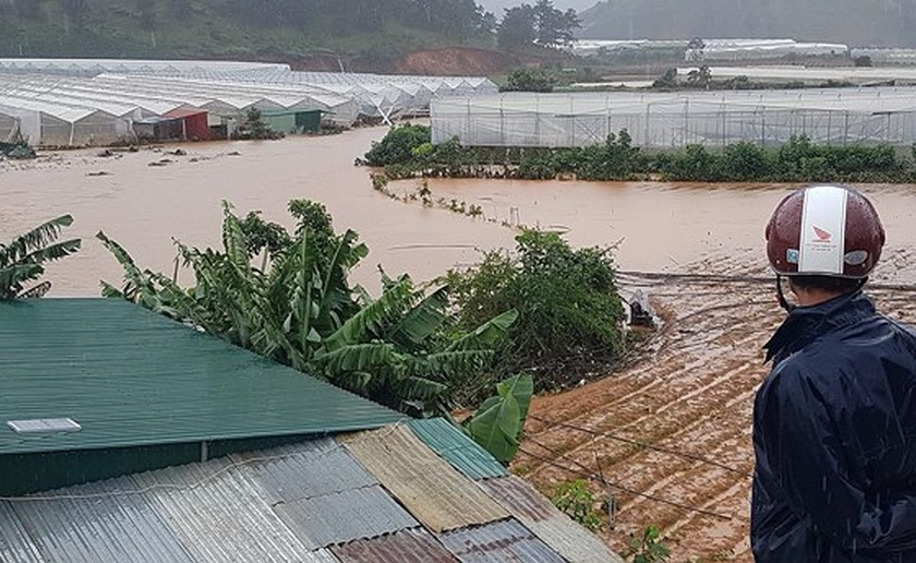More than 1,350 houses inundated due to tropical downpours ảnh 4