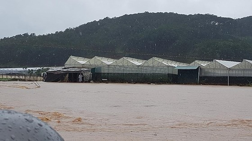 More than 1,350 houses inundated due to tropical downpours ảnh 3