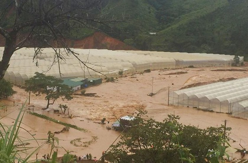 More than 1,350 houses inundated due to tropical downpours ảnh 2