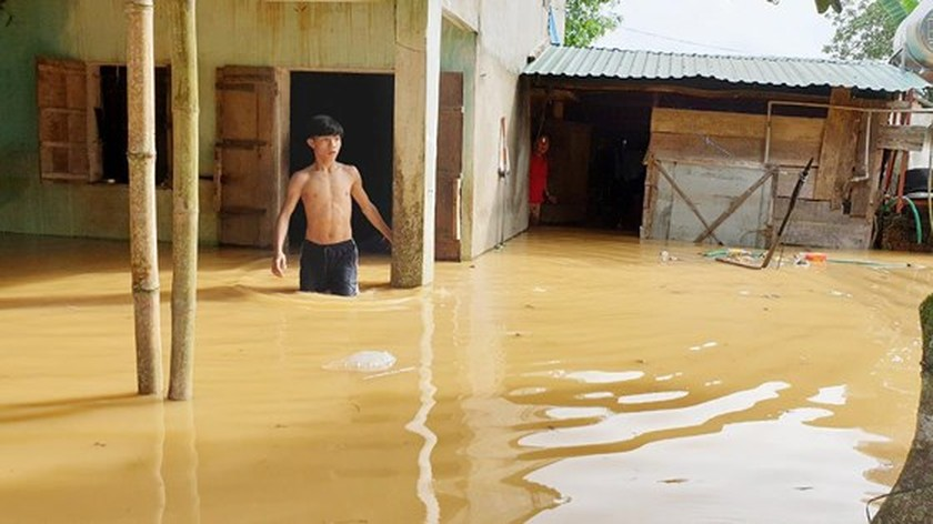More than 1,350 houses inundated due to tropical downpours ảnh 6