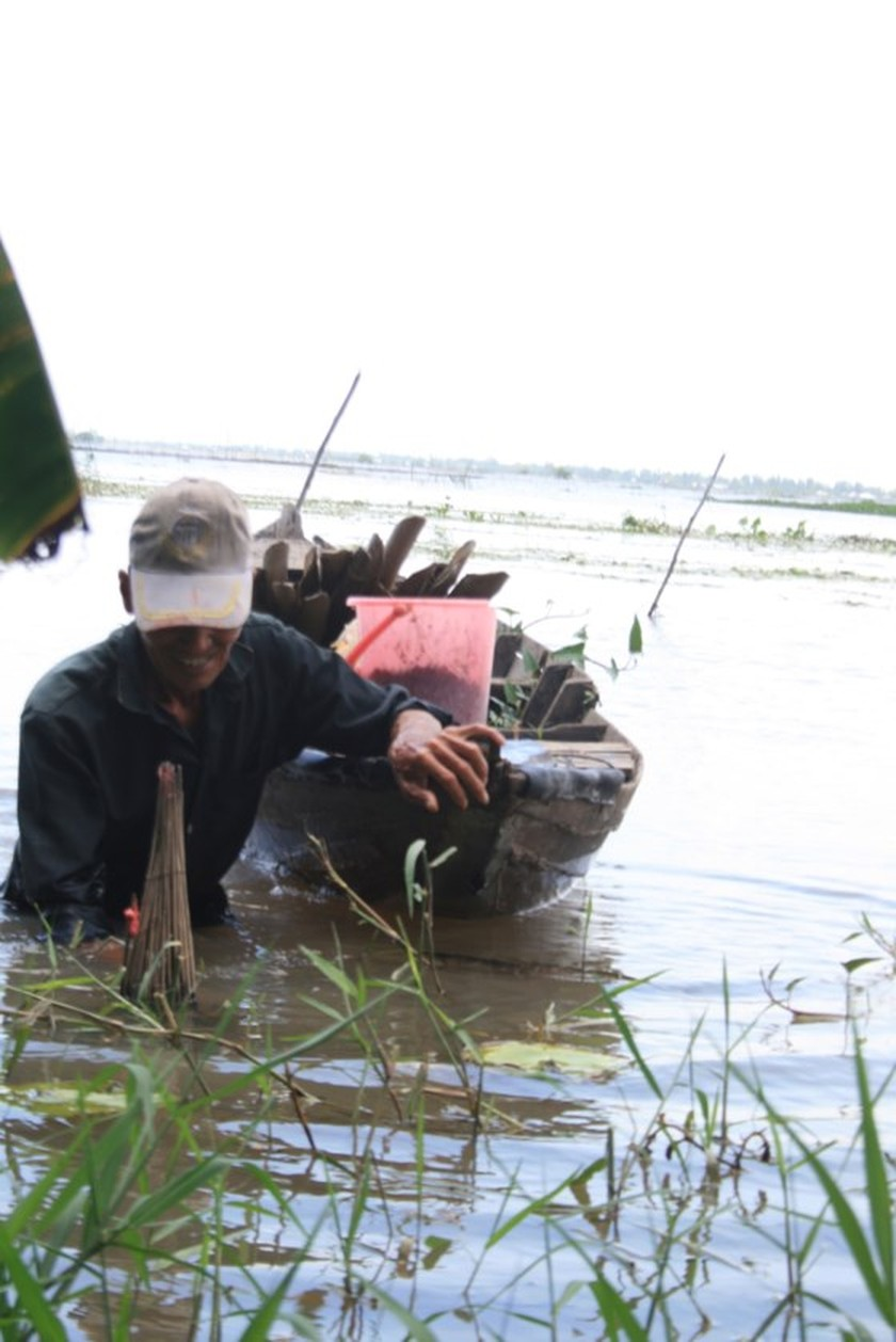Floodwater starts surging in Mekong Delta, pleasing local residents ảnh 1