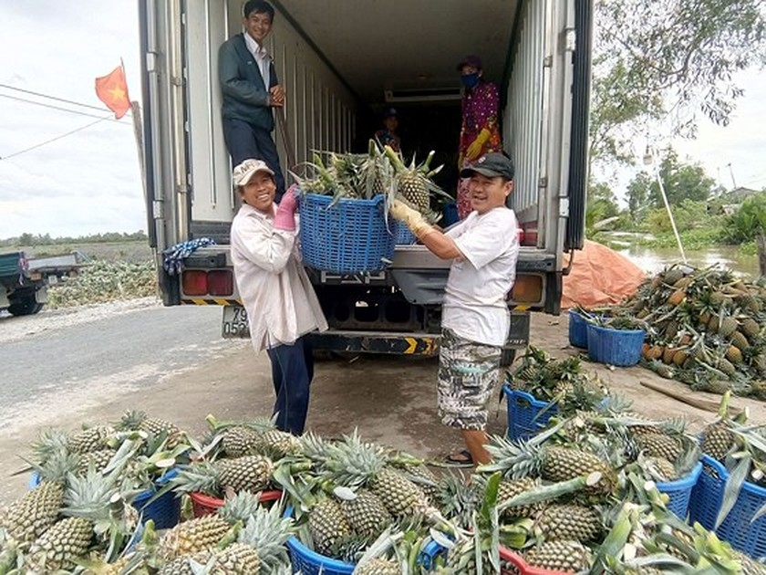 Ministry targets $4.5 billion vegetable, fruit export turnover by 2020 ảnh 1