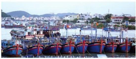 Southern Vietnam braces for typhoon Usagi ảnh 3