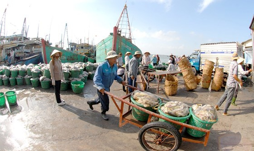 Difficulties hold back aquatic exports ảnh 2