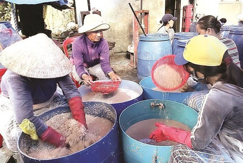 Trade villages with century history of fish sauce production ảnh 4