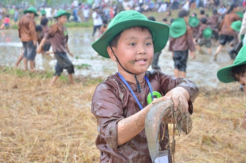 Hundreds of little farmers harvest rice in Quang Ngai province ảnh 10