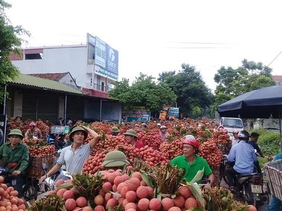 Heat waves just start in Central, Northern Vietnam ảnh 3