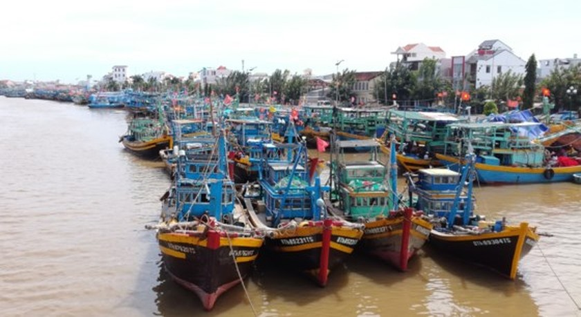 Binh Thuan's fishermen busily prepare for fishing trip after storm ảnh 1