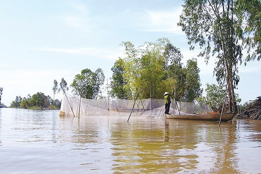 Mekong Delta deals actively with floods ảnh 1