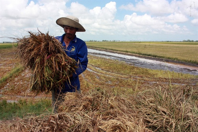 Mekong region prepares for early season flooding ảnh 1