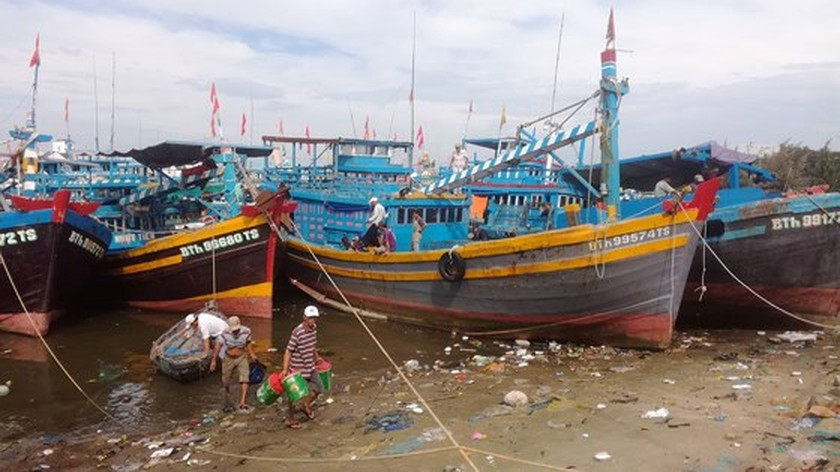 Binh Thuan's fishermen sailing back to sea after typhoon ảnh 2