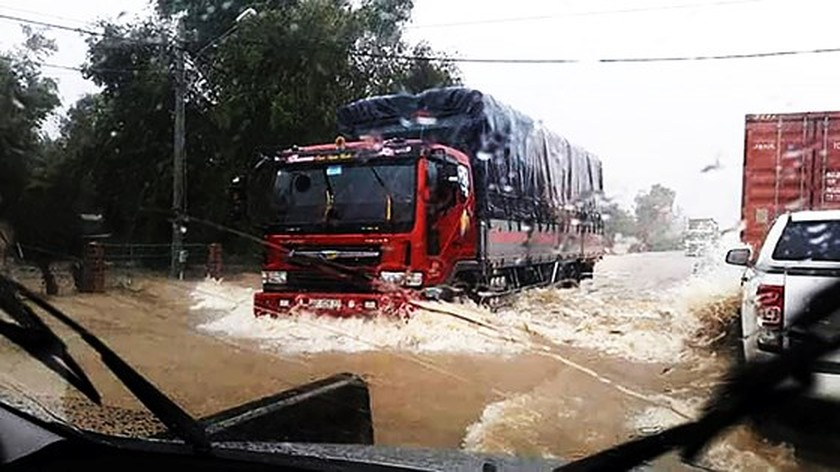 Binh Dinh province damaged seriously by heavy downpours ảnh 1