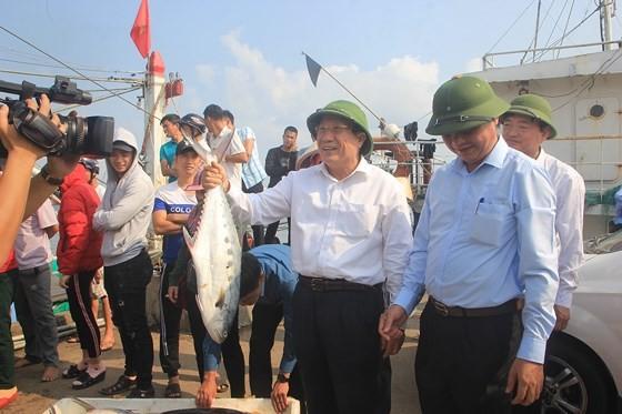 Ngư dân Quảng Trị trúng mẻ cá 7 tỷ đồng ảnh 3
