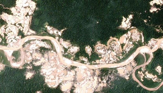 17 năm, Amazon mất 30 triệu ha rừng nguyên sinh