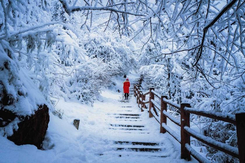 Núi thiêng Nga Mi   ảnh 3