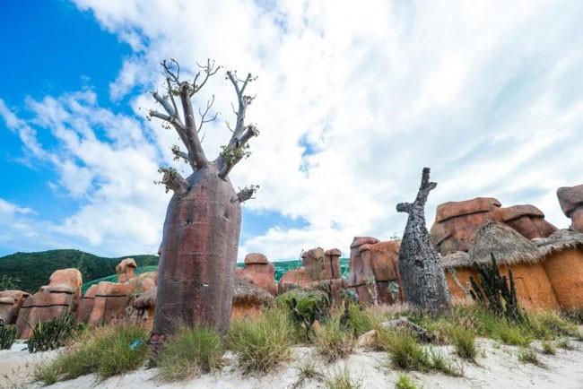 """Khám phá khu vườn """"kỳ hoa dị thảo"""" trên đảo kỷ lục Nha Trang ảnh 6"""