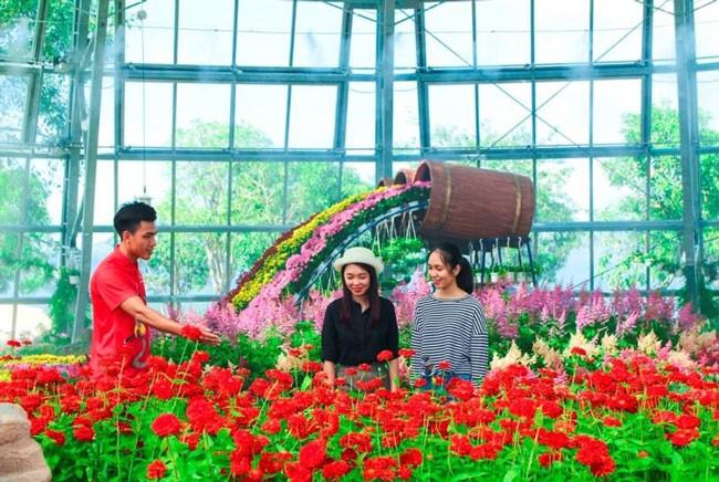 """Khám phá khu vườn """"kỳ hoa dị thảo"""" trên đảo kỷ lục Nha Trang ảnh 8"""