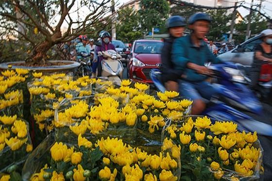Chợ hoa xuân trên bến dưới thuyền… ảnh 6
