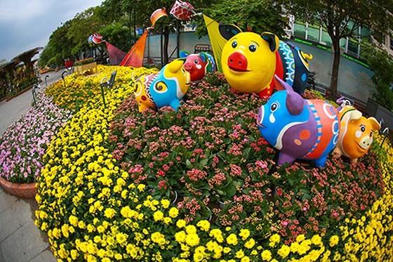 Đường hoa Nguyễn Huệ năm 2019 nhìn từ trên cao ảnh 8