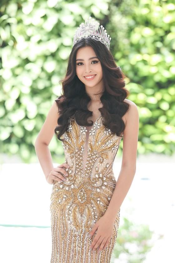 Miss World Vietnam 2019 begins ảnh 1