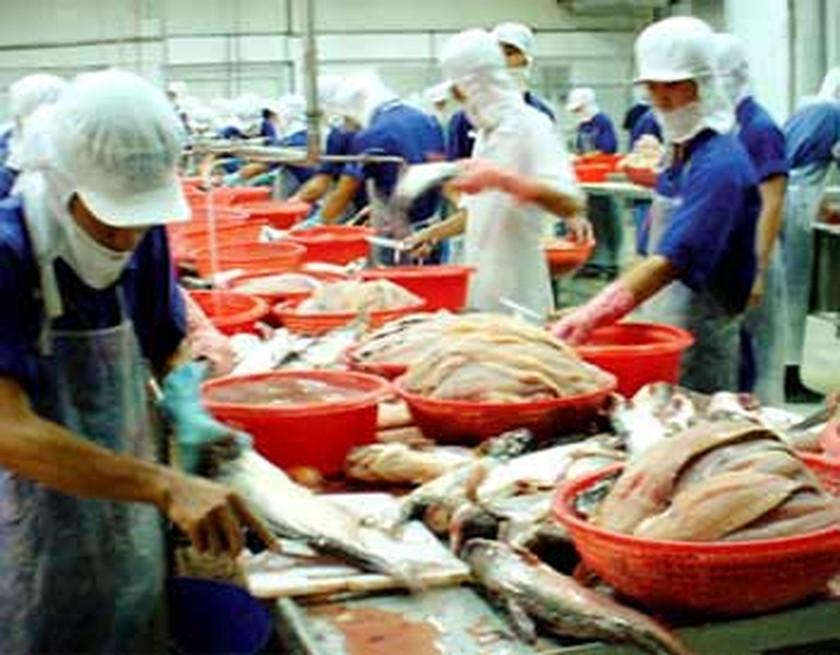 tax to us of vietnamese pangasius The us department of commerce said it may reduce its anti-dumping tax for more vietnamese pangasius exporters including vinh hoan, which enjoyed an anti-dumping tax exemption for its shipments to the north american country in the past.