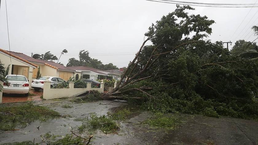 Bão Irma trút cơn thịnh nộ xuống Florida ảnh 1